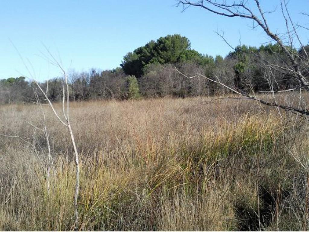 Vente terrain de 0 m2 34140 loupian 1848 terrain agricole for Terrain meze